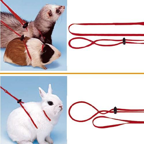Как сделать своими руками ошейник для кролика своими руками